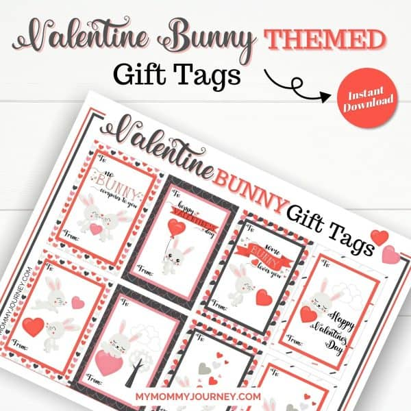 Valentine Bunny Themed Gift Tags